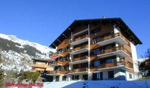 Аренда дома в Швейцарии