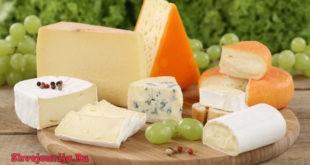 Сорта швейцарского сыра