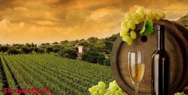 Виноделие в Швейцарии