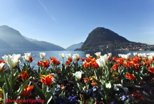 Природа Швейцарии