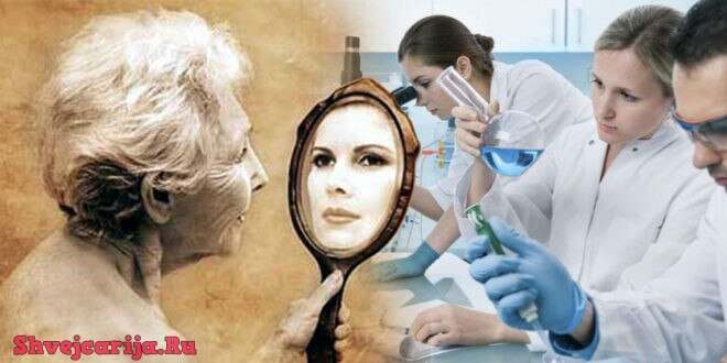 Геронтология в Швейцарии. Проблемы старения человека