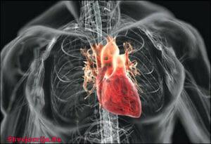 Торакально-абдоминальная онкология в ШвейцарииТоракально-абдоминальная онкология в Швейцарии