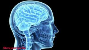 Лечение травматических и онкологических поражений головного мозга в Швейцарии