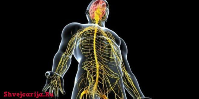 Лечение в Швейцарии воспалительных заболеваний нервной системы